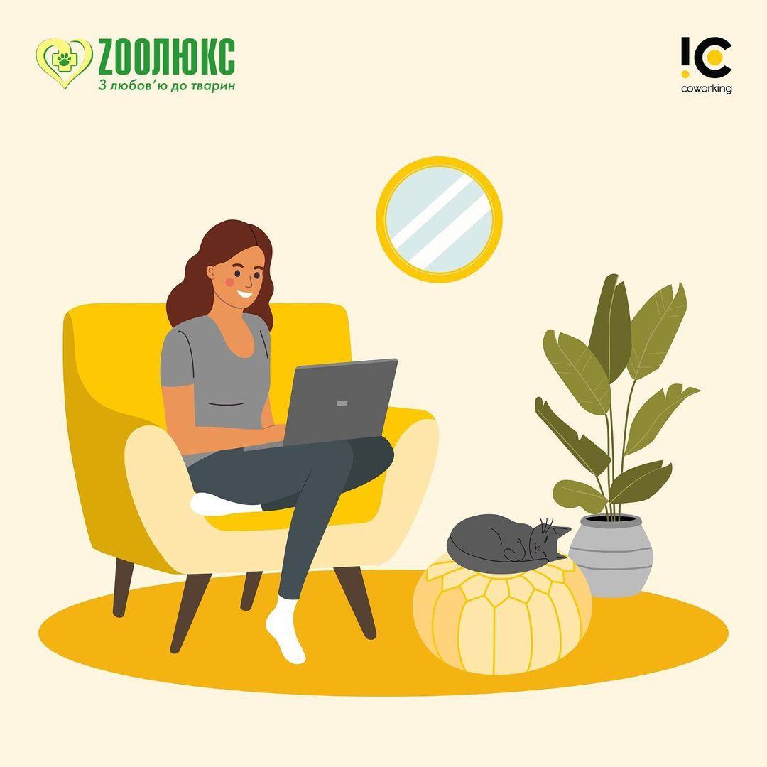 IC Coworking стали партнёрами с компанией Zooлюкс!